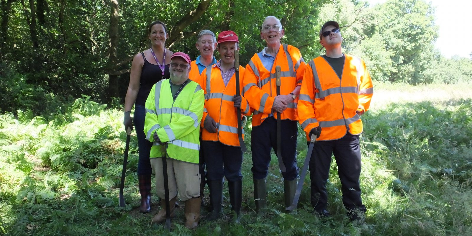 Volunteers from adult social care service Optalis help City Corporation Rangers with clearing bracken in Burnham Beeches